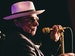 Heritage Live: Van Morrison, The Waterboys, Hothouse Flowers event picture