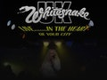 Whitesnake UK - The Tribute, Total Thunder event picture