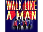 Walk Like A Man artist photo