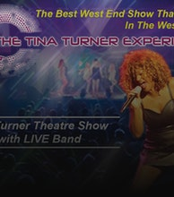 Simply The Best - The Tina Turner Experience artist photo