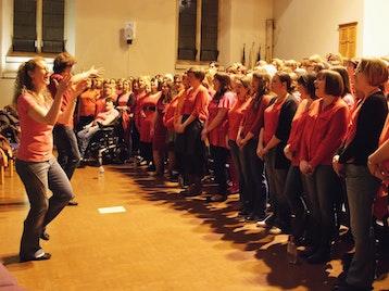 Summer Sensation: Riff Raff Choir, The Raff Pack picture