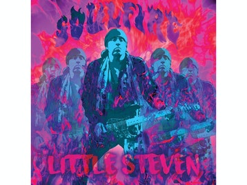 Little Steven & The Disciples Of Soul picture