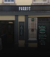 The Parrot artist photo