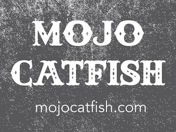 Mojo Catfish artist photo