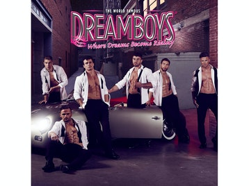 Fit And Famous Tour: The Dreamboys picture