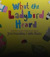 What The Ladybird Heard (Touring) artist photo