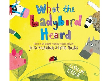 What The Ladybird Heard (Touring) picture