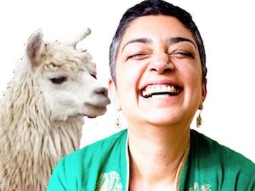 Sameena Zehra artist photo
