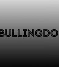 The Bullingdon artist photo