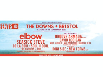 The Downs Festival 2017 picture