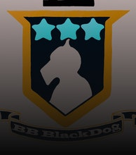 BB Blackdog artist photo