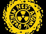 Ned's Atomic Dustbin artist photo