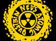 Ned's Atomic Dustbin artist photo