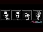 Wild Beasts artist photo
