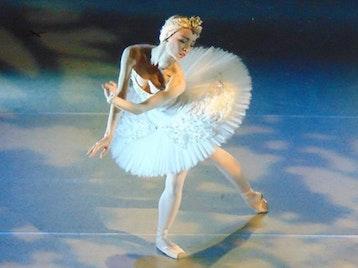 Swan Lake: Vienna Festival Ballet picture