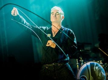Morrissey artist photo
