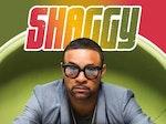 Shaggy artist photo