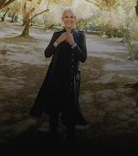 Joan Baez artist photo
