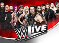 World Wrestling Entertainment (WWE) artist photo