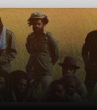 Black Roots artist photo