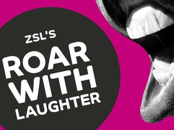 ZSL Presents Roar With Laughter: Alan Carr, Katherine Ryan, Rob Delaney, Sara Pascoe, Stephen K Amos, Terry Alderton picture