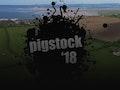 Pigstock 2018 event picture
