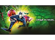 Cirque Du Soleil artist photo