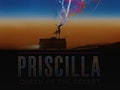 Priscilla Queen Of The Desert: West Bromwich Operatic Society (WBOS) event picture