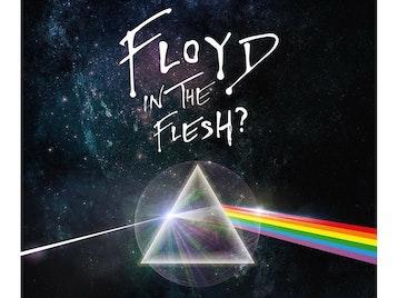Floyd In The Flesh artist photo