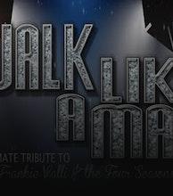 Frankie Valli & The Four Seasons Tribute Show artist photo