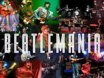 Beatlemania picture
