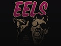 Eels event picture