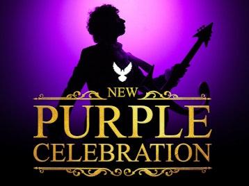 New Purple Celebration - The Music Of Prince, DJ Joe Lindsay picture