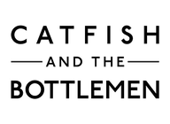 Catfish and the Bottlemen artist insignia