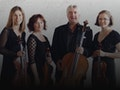 Like This? Like That!: Astaria String Quartet event picture