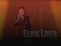 Elvis Lives, DJ Stephen Jackson event picture