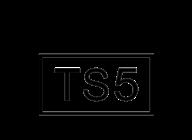 Craig David Presents TS5 artist insignia