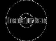 Ocean Colour Scene artist insignia
