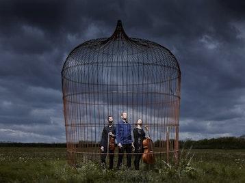 The Devil's Violin Company artist photo