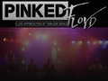 Pinked Floyd event picture