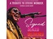 Signed Sealed Delivered - A Tribute To Stevie Wonder event picture
