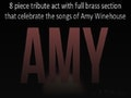 AMY - A Tribute To Amy Winehouse event picture
