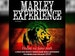 The Marley Experience, Downsetters event picture
