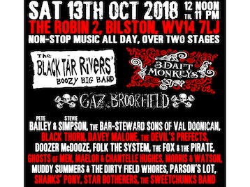 Bostiiin Festival 2018: The Black Tar Rivers' Boozy Big Band, 3 Daft Monkeys, Gaz Brookfield, Bailey & Simpson, The Bar-Steward Sons Of Val Doonican, Black Thorn, Davey Malone, The Devil's Prefects, Doozer McDooze, Folk The System, The Fox & The Pirate, Ghosts Of Men, Maelor & Chantelle Hughes, Morris & Watson, Muddy Summers And The Dirty Field Whores, Parson's Lot, Shanks' Pony, Star Botherers, The Sweetchunks Band picture