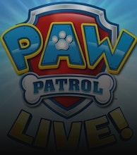 PAW Patrol Live! artist photo