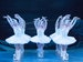 Swan Lake: English National Ballet (ENB) event picture