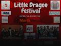 The Little Dragon Music Festival 18 event picture
