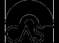 Cast artist insignia