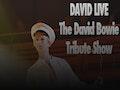 David Live event picture