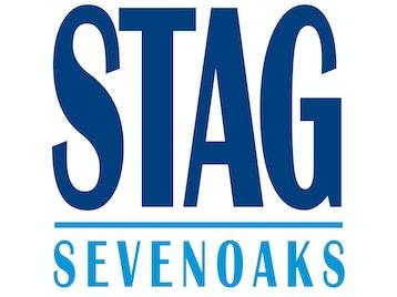 Stag Community Arts Centre venue photo